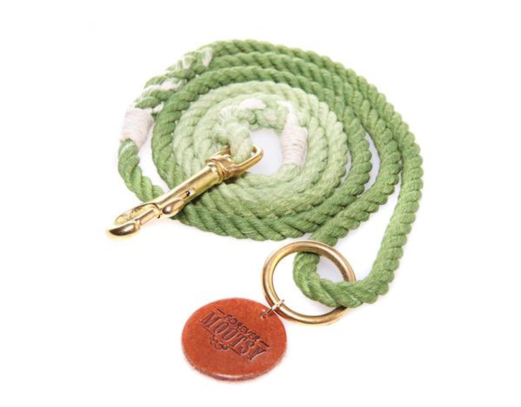 Apple Green Ombré Dog Leash