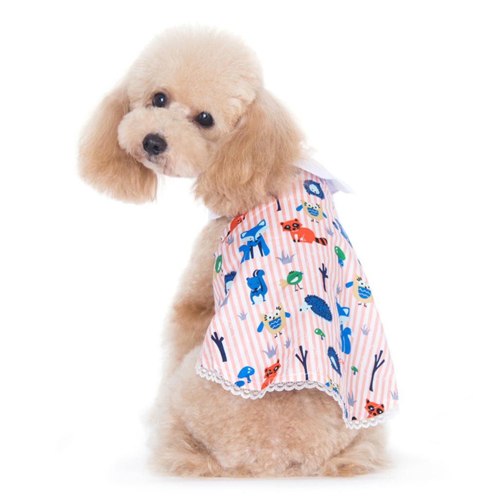 PP Animal Fun Dress