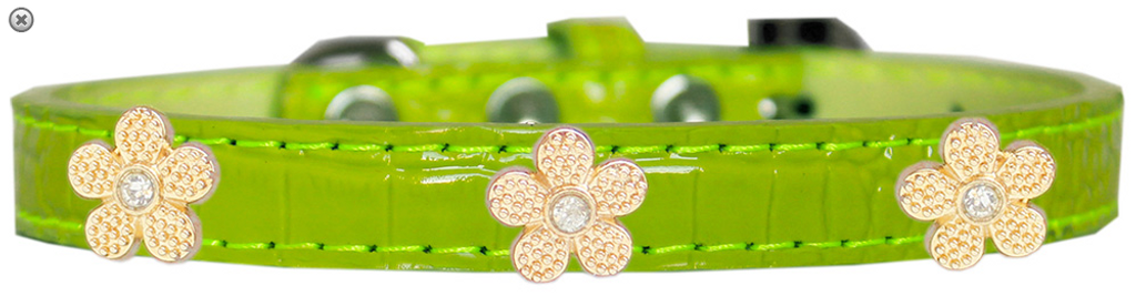 Gold Flower Widget Croc Dog Collar