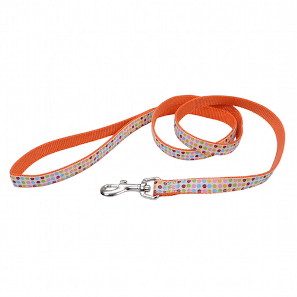 "Coastal Pet Pet Attire Ribbon Nylon Leash 5/8"" x 6"""