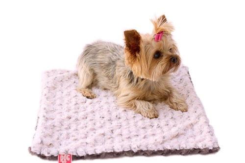 Pink/Grey Two Tone Rosebud Minkie Binkie Blanket