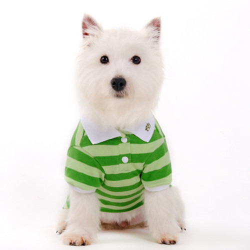 Dogo Dog Stripe Polo Shirt Green - Free Shipping