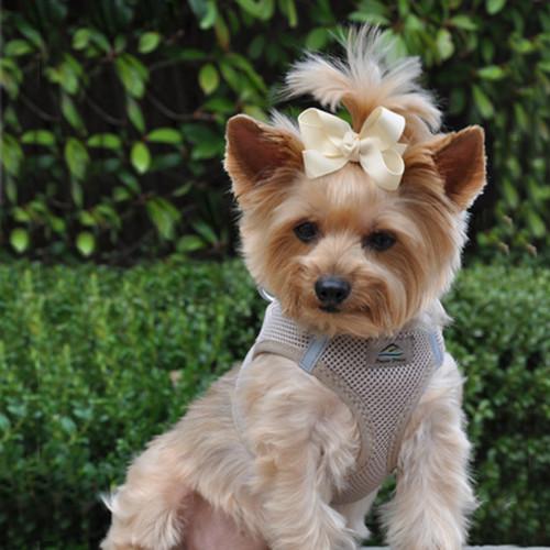 American River Ultra Choke Free Dog Harnesss - Beige