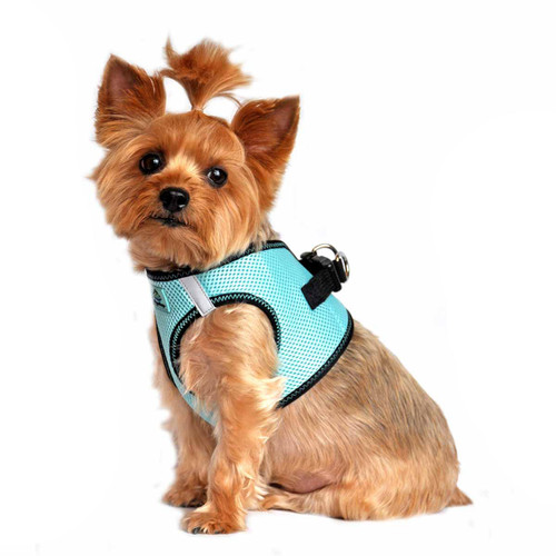 American River Dog Harness Top Stitch Collection - Aruba Blue