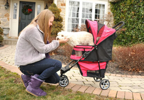 Regal™ Raspberry Sorbet Stroller for pets up to 25lbs.