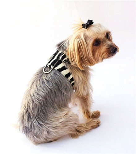 Zebra Hollywood Quick Release Ultra Suede Harness