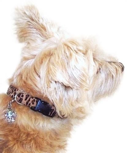 Leopard Celebrity Quick Release Ultra Suede Collar