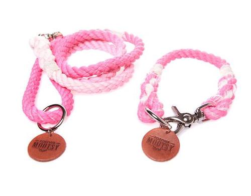 Petal Pink Ombré Dog Leash