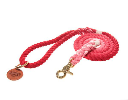 Scarlet Red Ombré Dog Leash