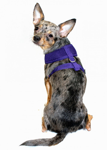 Ultra Comfort Purple Mesh Harness Vest