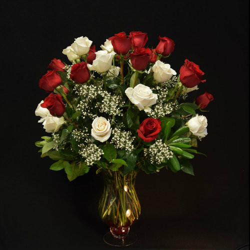 PERFECT THREE DOZEN RED & WHITE