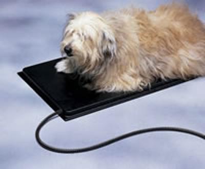 Medium Allied Plastic Heated Pet Mat