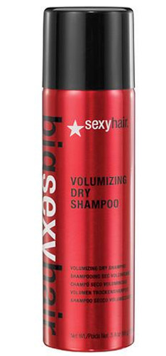 Volumizing Dry Shampoo 3.4oz
