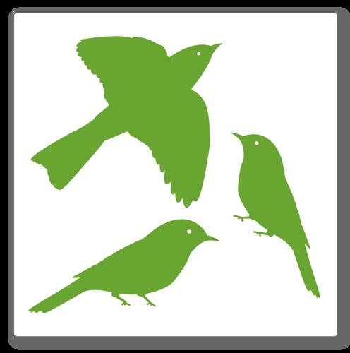 three birds wall decal