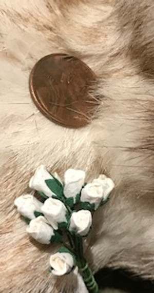 White Paper Rose Buds