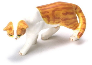 Orange & White Creeping Cat
