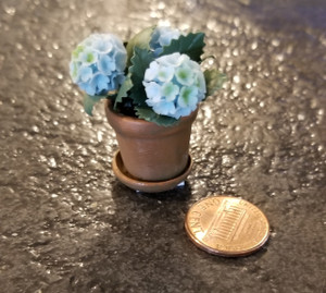 Potted Geranium with Saucer