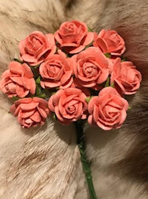Coral Paper Roses