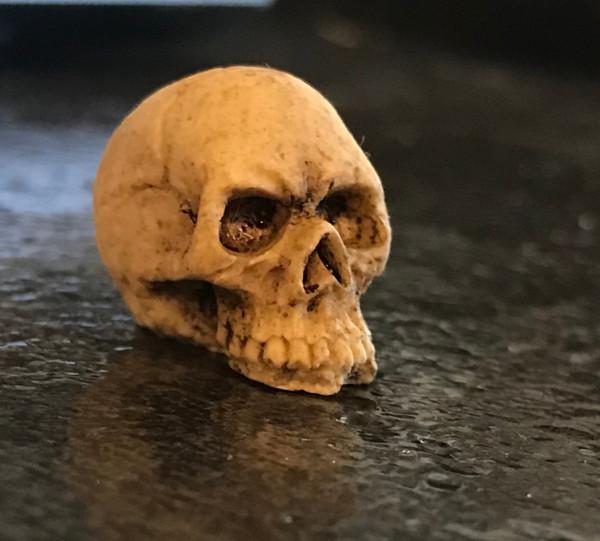 1/12 Scale Skull