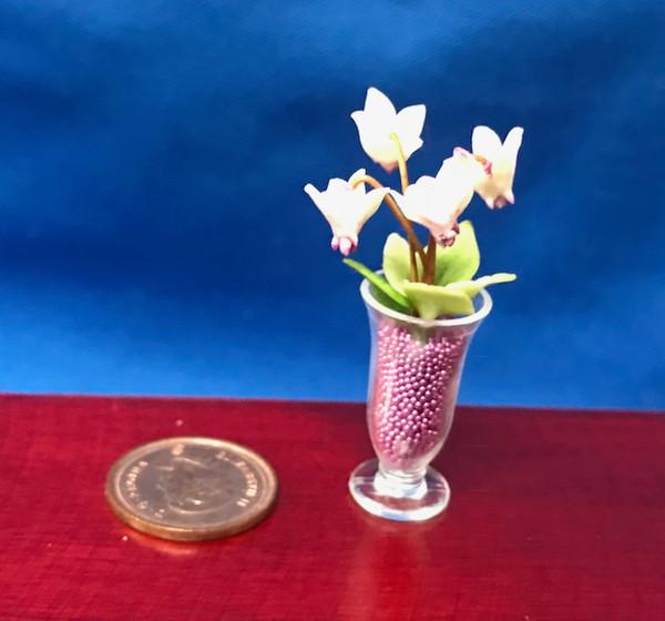 Economical Flower Vase (curved)