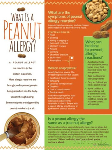 Peanut Allergy Poster