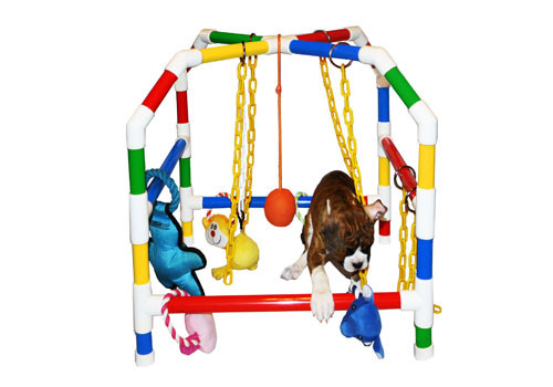 """Play House - Small 22"""""""