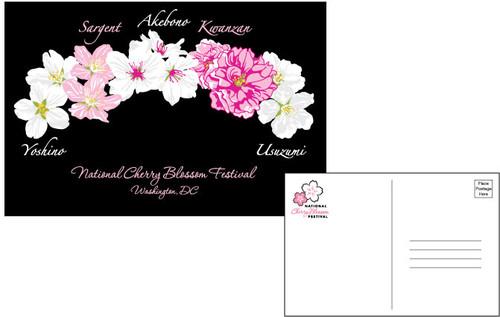 Five Blossom Postcards