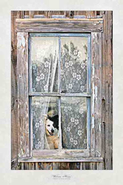 """""""Welcome Home"""" Greeting Cards By Vickie Close"""
