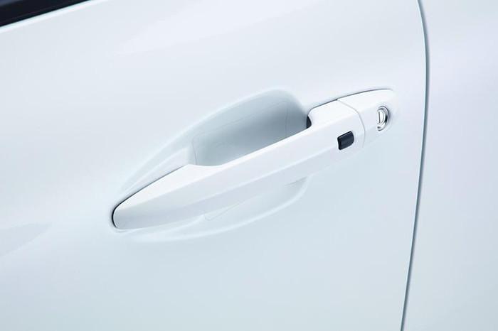 Kia Niro Door Pocket Protector Films
