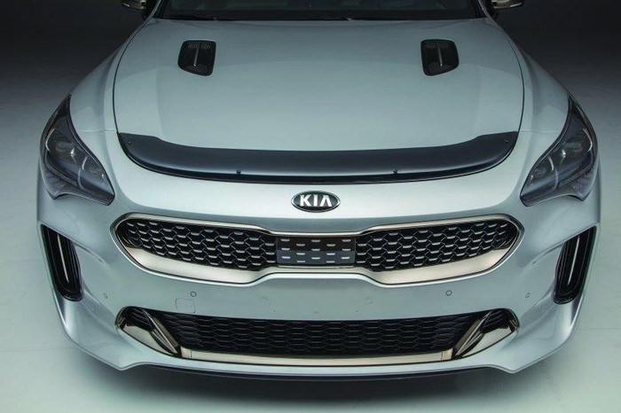 Kia Stinger Bug Deflector