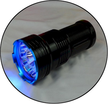 The Blue Monster 395 nm is the best scorpion hunter UV flash light in the world.