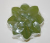 image of hand made soap made from Moringa leaf
