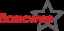 Basicwise.com