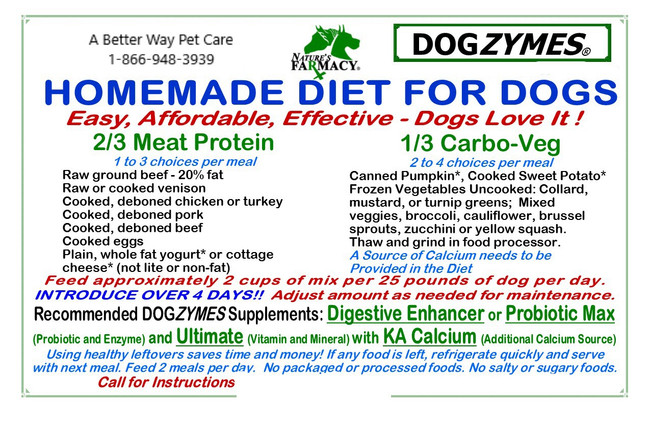 Homemade Diet for Dogs