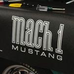 Mach 1 Fender Gripper®