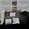 Celebration Orchid Transplanting Kit (Den)