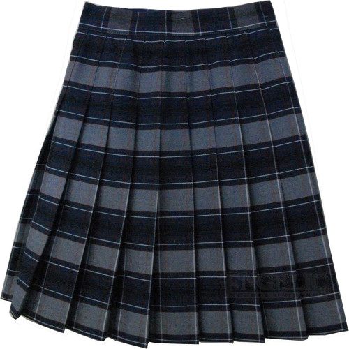 Girls School Uniform Pleated Skirt Plaid F
