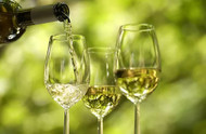 Vinho Verde: Beyond the Fizz