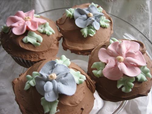 Primrose Cupcakes