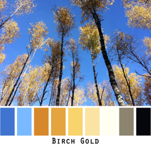 Birch Gold - looking up at the blue sky through golden birch leaves, colors for blue eyes, brown eyes, blonde hair, black hair - photo by Inese Iris Liepina, Wrapture by Inese
