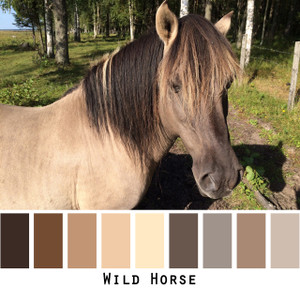 Wild Horse  - dusty brown wild mare neutral beige taupe colors for brown eyes,  brunette - photo by Inese Iris Liepina, Wrapture by Inese