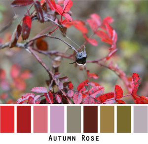Autumn Rose - cool red raisin violet brown dusty lavender olive sage rose leaves for green eyes, brown eyes, brunette, black hair, photo by Inese Iris Liepina, Wrapture by Inese