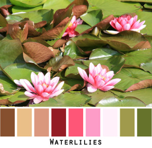 Waterlilies - brown gold deep ruby red pink pale rose olive green waterlily fronds and flowers - colors for green eyes, brown eyes, brunette - photo by Inese Iris Liepina, Wrapture by Inese