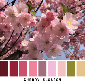 Cherry Blossom - ruby red pink blush pale peach olive cherry tree blossoms in spring - colors for green eyes, brown eyes, brunette - photo by Inese Iris Liepina, Wrapture by Inese