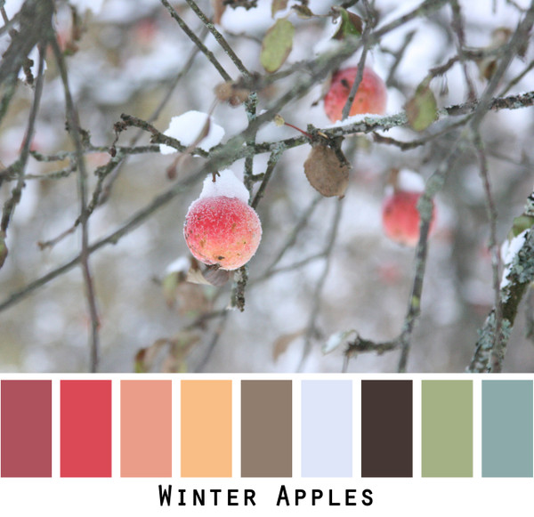 Winter Apples - paprika red rose salmon mango tan blue grey sage green and black for  green eyes, brown eyes,  brunette, black hair, grey hair- photo by Inese Iris Liepina, Wrapture by Inese