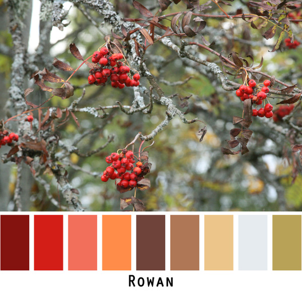 Rowan - red coral orange brown gold silver blue olive green  for green eyes, brown eyes, brunette, black hair, grey hair photo by Inese Iris Liepina, Wrapture by Inese