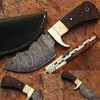 Damascus Steel Skinner Knife w/ Walnut Wood & Camel Bone Handle