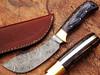 WHITE DEER Damascus Steel Kukri Skinner Knife Exotic Wood Handle Buffalo Skinner