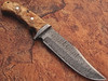 White Deer Damascus Steel Hunting Knife w/ Burl Olive Wood Hand