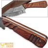 WHITE DEER SPEY BLADE Damascus Steel Hunting Skinner Knife Cocobolo Hardwood Handle